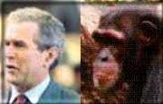 George Dubya, separated at birth??