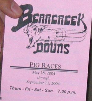pig races flyer